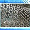 拡大された金網/拡大された金属の網