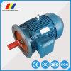 Ye2-180m-4 AC誘導電動機の電動機