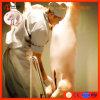 가축 Swineturnkey 프로젝트를 위한 완전한 돼지 도살 장비 도살장 기계 선