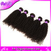 O cabelo Curly Kinky malaio malaio 4PCS do Virgin do cabelo Curly, Weave humano Curly do vison malaio da beleza empacota o preto 8-30