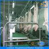 Linha quente linha de processamento equipamento da matança dos carneiros do porco da matança