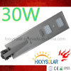 Alta qualità 30W tutto in un indicatore luminoso di via solare del LED