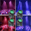 CREE RGBW (4in1) 120W LED Beam Flower Moving Head Stage Effect Light 12X10W