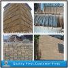 Wall Facadeのための中国のYellow Sandstone