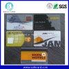 Konkurrierende bedruckbare freie bereifte PlastikVisitenkarten