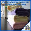 Chambre et Car Clean Microfiber Clean Cloth