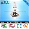 24V 70W H1 de Bol van de Lamp van Lamp&Auto van het Halogeen