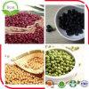 非GMO大きい黒豆/黒い大豆