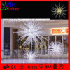 실내 LED Decoration Landscape 3D Motif 다중 Ray Star Light