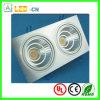 2*10W High Power LED Down Light
