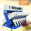 Bohnen RGB-Farben-Sorter/Bohnen-optische sortierende Maschine für das Bohnen-Aufbereiten