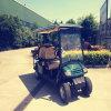 Golf facente un giro turistico elettrico Rse-2069f di uso di zona turistica