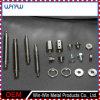 Maschinell bearbeitetes Teil-Präzisions-Metall, das Teil CNC dreht mechanisches Teil aufbereitet