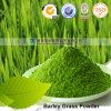 Preiswertes Ineinander greifen-organisches Gersten-Gras-Puder des Großverkauf-200