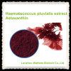 Extracto puro CAS 472-61-7 del Pluvialis de Haematococcus de la astaxantina de la alta calidad