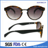 TAC 렌즈를 가진 Soflying 여자 고전적인 기온변화도에 의하여 극화되는 안경알