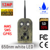 12MP GPRS Wildview Jagd-Kamera