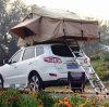 3-4 شخص يخيّم سقف خيمة علبيّة لأنّ عمليّة بيع