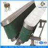 Small Abattoir Sheep Slaughterhouse Machinery