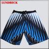 Shorts variopinti della scheda degli uomini con buona qualità