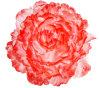 Clip di seta Shimmery artificiali del fiore dei capelli con cinque accessori di seta lanuginosi concentrare dei capelli della clip del fiore del Rhinestone