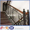 Residential pratico Safety Wrought Iron Railings (dhrailings-24)