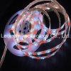 De Magische Droom van de Verlichting RGBW van de LEIDENE 5050SMD van de leiden- Lijst 24VDC Strook van de Uitrusting