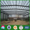 Almacenaje de la estructura de acero/del marco de acero vertido (XGZ-SSW 287)