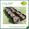 Onlylife wächst mehrfachverwendbares Weich-Mit Seiten versehenes Gewebe-Gemüse Gewebe-Pflanzer
