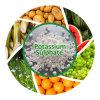Engrais foliaire de concession de sulfate de potassium de l'engrais 50% K2o