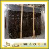 Galettes de marbre foncées en pierre Polished d'Emperador pour la partie supérieure du comptoir/Vanitytop (YQC)