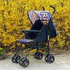 Baby-Spaziergänger, Buggy in Summer