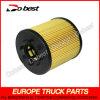 Combustível Filter e Oil Filter para MAN Truck (DB-M18-001)