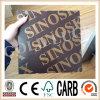 Qingdao Gold Luck Film Faced Plywood avec Logo Sinoskyplex
