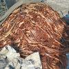 Chatarra de cobre del precio de fábrica / chatarra de cobre del alambre / cobre de la baya del molino 99%