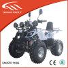 ATV bon marché à vendre l'essence ATV Lianmei ATV 110cc ATV