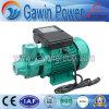 12 볼트 DC와 집 사용을%s 전기 제트기 수도 펌프