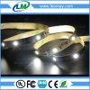 Konstantes Bargeld der Qualitäts verziert 5050SMD flexibles LED Streifen-Licht