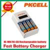 Charger astuto per AA/AAA Ni-MH/Ni-CD Rechargeable Batteries (8152)