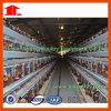 De Kooi van de Kip van het Landbouwbedrijf van het gevogelte van China