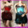 Самое модное новое платье партии платья вечера пера/платье знаменитости
