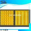 高品質Certificated Bright Color Guide Floor Tile (300mmx300mm)