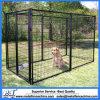 Cage extérieure de chenil de passage de 10 x 10 crabots
