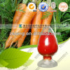 Natural Carrot Extract Beta Carotene