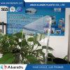 Panneau acrylique de plexiglass de feuille acrylique acrylique claire de la feuille 3mm PMMA