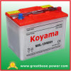 N60L Dry Cell Lead Acid Battery 12V 60ah