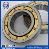 Rodamiento de rodillos cilíndrico radial de la original NTN NSK Koyo de la alta precisión