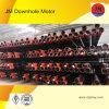 Моторы Downhole высокого качества от профессионального изготовления--Jm