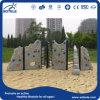 Установленная спортивная площадка детей игрушки парка атракционов пластичная (RC-14003)