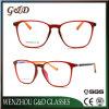 Het recentste Nieuwe Populaire Optische Frame T6008 van het Oogglas van Eyewear van de Glazen van het Ontwerp Tr90